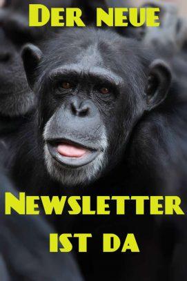 Der sechste Newsletter ist da